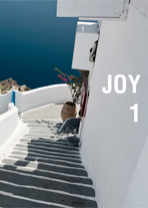 Catalogo Joy 2015